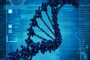 The epigenome can turn genes in DNA on or off. (iStockphoto: cosmin4000 )